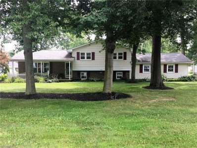 115 Robinwood Dr, New Middletown, OH 44442 - MLS#: 3918449