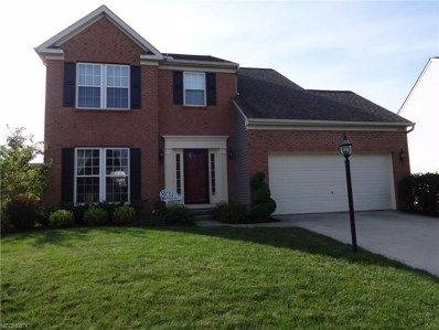 10481 Kerwick Ct, Reminderville, OH 44202 - MLS#: 3918609