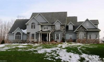 11289 Stafford Rd, Chagrin Falls, OH 44023 - MLS#: 3918811