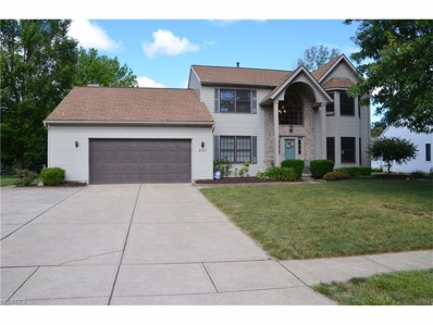 203 Alexander Ave, Amherst, OH 44001 - MLS#: 3918922