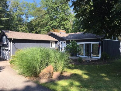 134 Lakeview Ln, Chagrin Falls, OH 44022 - MLS#: 3919016