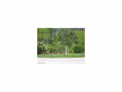 Schady, Olmsted Township, OH 44138 - MLS#: 3919526