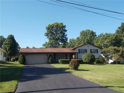 156 Robinwood Dr, New Middletown, OH 44442 - MLS#: 3920850