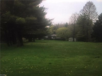 45423 Russia Road, Oberlin, OH 44074 - #: 3920908