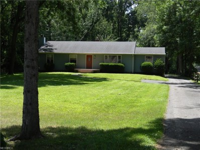 2808 Mogadore Rd, Akron, OH 44312 - MLS#: 3921300