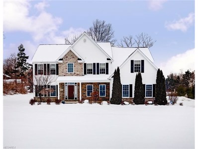 2412 Pine Valley Dr, Willoughby Hills, OH 44094 - MLS#: 3921713