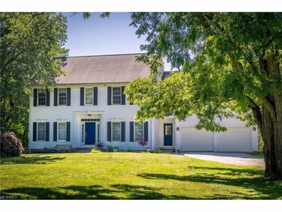 2434 River Rd, Willoughby Hills, OH 44094 - MLS#: 3921720