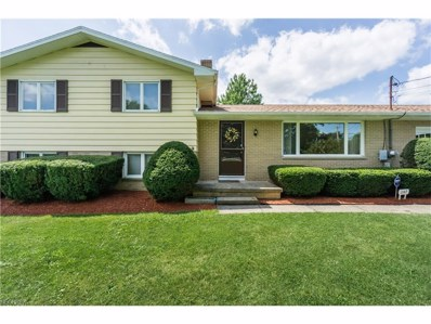 1147 Homeworth Rd, Alliance, OH 44601 - MLS#: 3921823