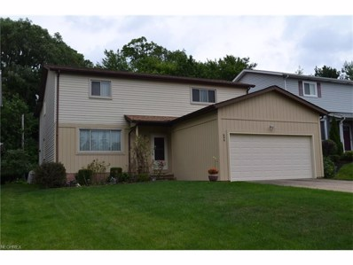 699 Anthony St, Richmond Heights, OH 44143 - MLS#: 3922781