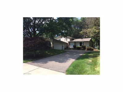 779 Valley Dr, Amherst, OH 44001 - MLS#: 3922791
