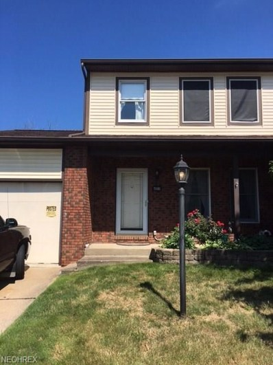 7005 Woodthrush Ave UNIT 1, Painesville, OH 44077 - MLS#: 3923052