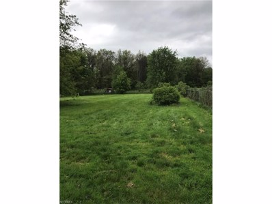 33720 Cooley Rd, Columbia Station, OH 44028 - MLS#: 3923178