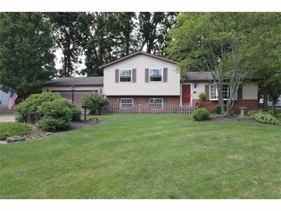 3441 Meanderwood Dr, Canfield, OH 44406 - MLS#: 3923200