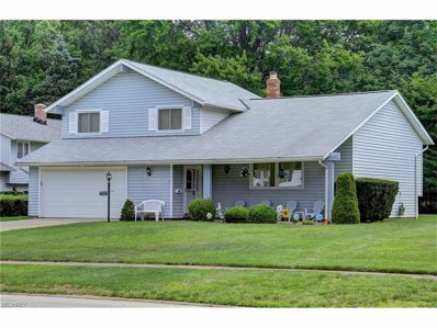 519 Catlin Dr, Richmond Heights, OH 44143 - MLS#: 3923330