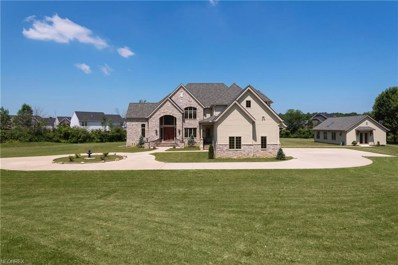 38780 French Creek Rd, Avon, OH 44011 - MLS#: 3923423
