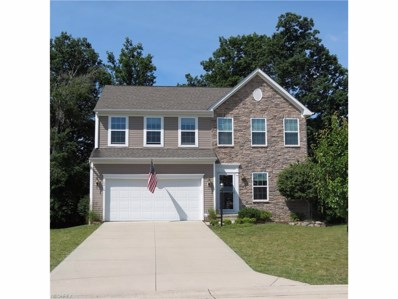 10416 Joyce Ct, Reminderville, OH 44202 - MLS#: 3924475