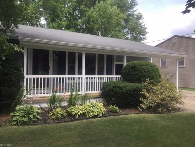 3838 New Rd, Austintown, OH 44515 - MLS#: 3924770