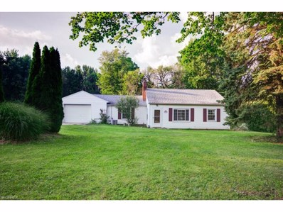 347 Yager Rd, Clinton, OH 44216 - MLS#: 3925427