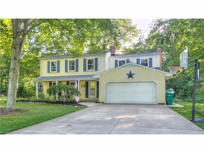 7650 Mountain Park Dr, Concord, OH 44060 - MLS#: 3925439