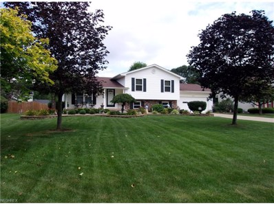 6982 Berry Blossom, Canfield, OH 44406 - MLS#: 3926061