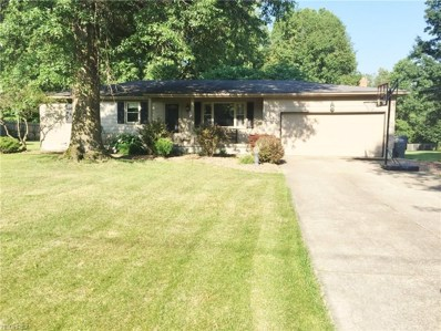 4314 Timberbrook Dr, Canfield, OH 44406 - MLS#: 3926260