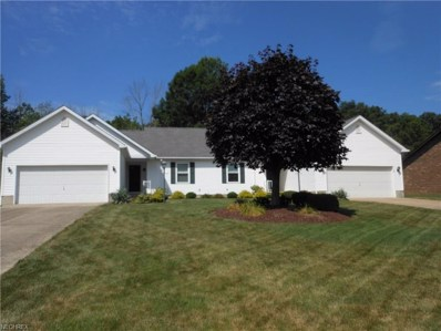 468 Shadydale Dr UNIT 470, Canfield, OH 44406 - MLS#: 3926953