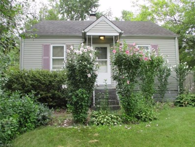 1226 Nestor Ave, Akron, OH 44314 - MLS#: 3927050