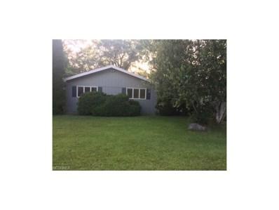1114 Cinnamon Dr SOUTH, West Salem, OH 44287 - MLS#: 3927180