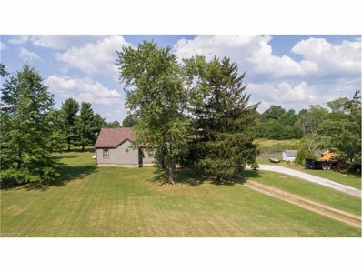 3898 State Route 14, Rootstown, OH 44272 - MLS#: 3927276