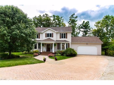 4786 River Rd, Perry, OH 44081 - MLS#: 3927402