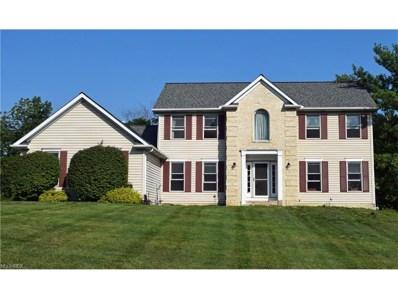10306 Springbrook Ct, Concord, OH 44077 - MLS#: 3928825
