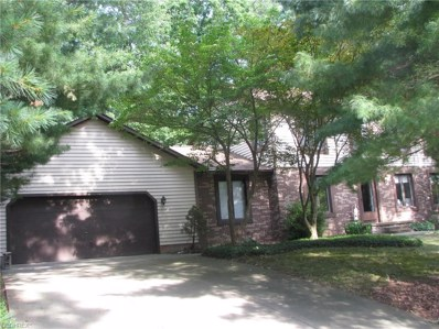 4193 Woodpark Dr, Stow, OH 44224 - MLS#: 3928871