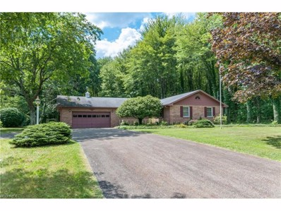 3165 Colony Dr, Alliance, OH 44601 - MLS#: 3928875