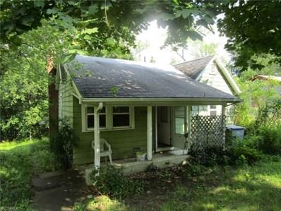 14621 Chestnut Dr, Newbury, OH 44065 - MLS#: 3929176