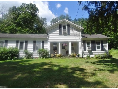 11037 State Route 44, Mantua, OH 44255 - MLS#: 3929825