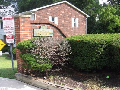 762 Mentor Ave UNIT 5, Painesville, OH 44077 - MLS#: 3930179