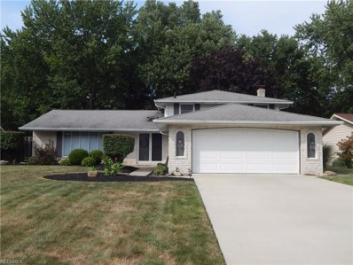 17076 Hunting Meadows Dr, Strongsville, OH 44136 - MLS#: 3930361