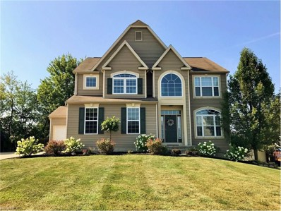 393 Bluestone Ct, Wadsworth, OH 44281 - MLS#: 3930539
