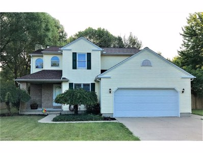 451 Maple Ave, Sheffield Lake, OH 44054 - MLS#: 3930587