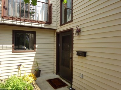 15224 Pine Hill Trl UNIT B9, Middleburg Heights, OH 44133 - MLS#: 3930639