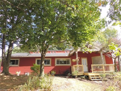 3445 S Smith Rd, Fairlawn, OH 44333 - MLS#: 3931393