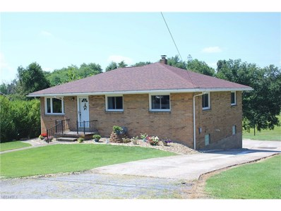 808 McLister Ave, Mingo Junction, OH 43938 - MLS#: 3931419