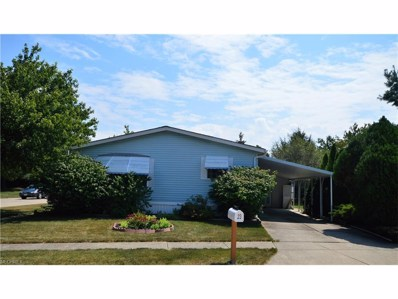 23 Lees Ln, Olmsted Township, OH 44138 - MLS#: 3931661