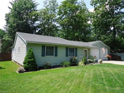 166 Demi Dune Dr, Chippewa Lake, OH 44215 - MLS#: 3931852