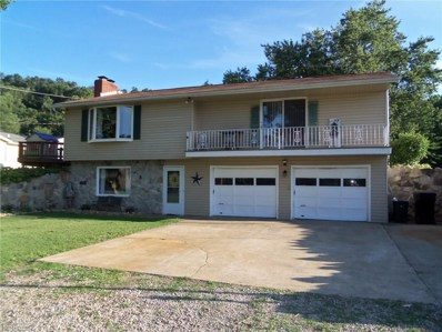 4145 Old River Rd, Philo, OH 43771 - MLS#: 3931893