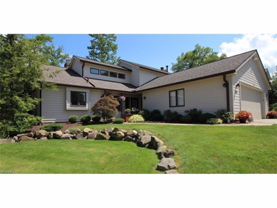 431 Chipping Ln, Chagrin Falls, OH 44023 - MLS#: 3932063