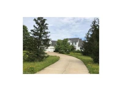 11090 River Rd, Chardon, OH 44024 - MLS#: 3933585