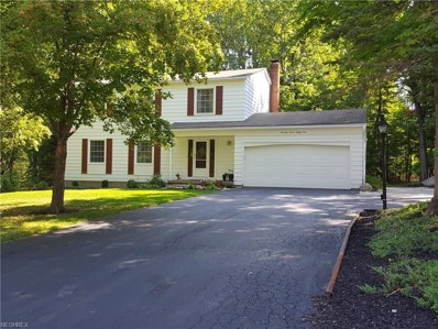 7781 Skylineview Dr, Concord, OH 44060 - MLS#: 3933921