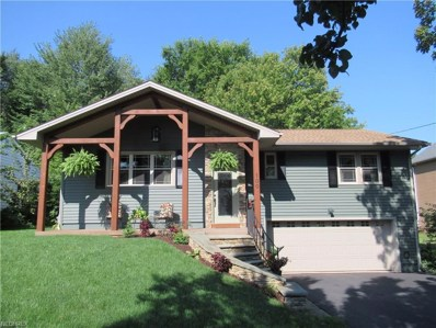 100 Hood Dr, Canfield, OH 44406 - MLS#: 3934222