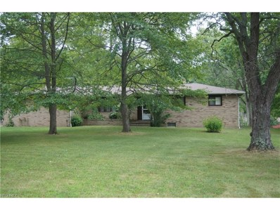 4176 Industry, Rootstown, OH 44272 - MLS#: 3934444